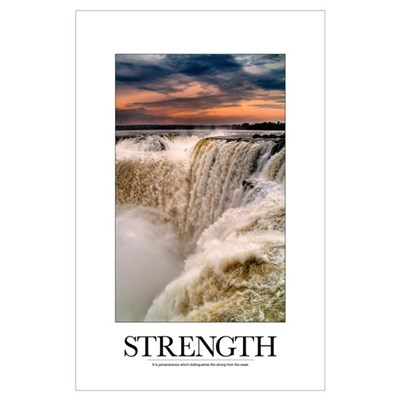 Inspirational Poster: It is perseverance which dis Poster