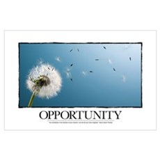 Inspirational Poster: Go confidently in the direct Poster