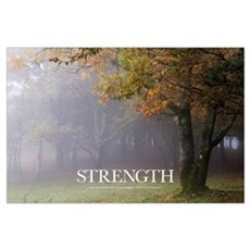 Inspirational Poster: Every great oak tree started Poster