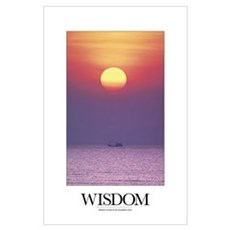 Inspirational Motivational Poster: Wisdom comes to Poster