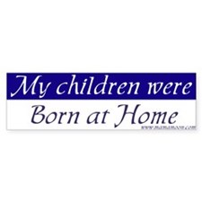 My children were born... Bumper Bumper Sticker
