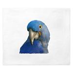 Hyacinth Macaw King Duvet