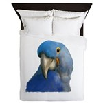 Hyacinth Macaw Queen Duvet