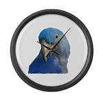 Hyacinth Macaw Large Wall Clock