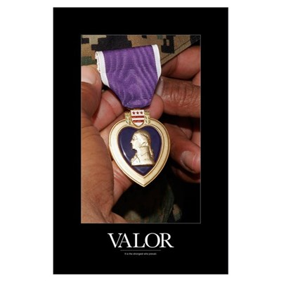Military Poster: Holding purple heart Poster