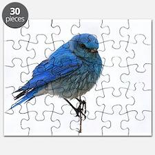 Mountain Blue Bird Puzzle