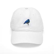 Mountain Blue Bird Baseball Cap
