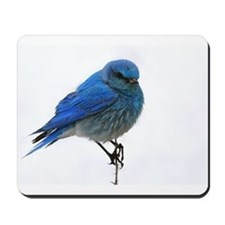 Mountain Blue Bird Mousepad