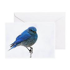 Mountain Blue Bird Greeting Card