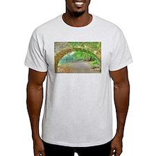 HDR bridge and creek T-Shirt