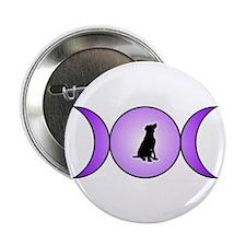 "Gaia 2.25"" Button"