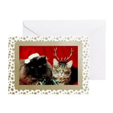 Vintage Cats Christmas Greeting Cards (Pk of 10)
