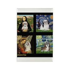 Comp4-Shih Tzus Rectangle Magnet (10 pack)
