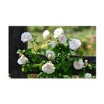 Romantic White Rose 35x21 Wall Decal