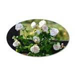 Romantic White Rose 35x21 Oval Wall Decal