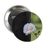 Romantic White Rose 2.25