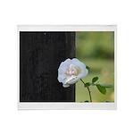 Romantic White Rose Throw Blanket