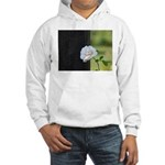 Romantic White Rose Hooded Sweatshirt