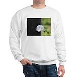 Romantic White Rose Sweatshirt