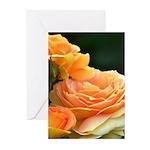 Romantic Peach Roses Greeting Cards (Pk of 10)