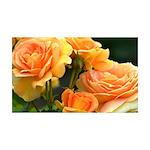 Romantic Peach Roses 35x21 Wall Decal