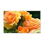 Romantic Peach Roses 20x12 Wall Decal