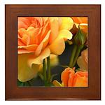 Romantic Peach Roses Framed Tile
