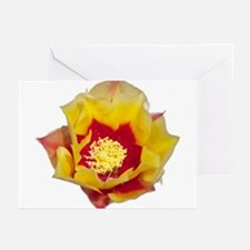 Prickly Pear Flower Greeting Cards (Pk of 20)