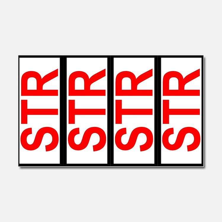 STR SCCA Solo Class Plates Car Magnet 20 x 12
