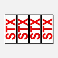 STX SCCA Solo Class Plates Car Magnet 20 x 12