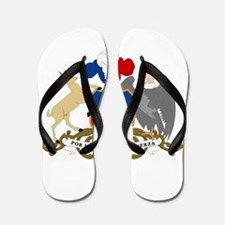 Chile Coat Of Arms Flip Flops