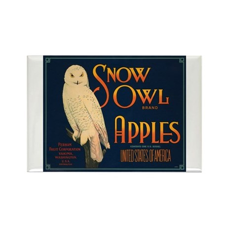 Snow Owl Apples Fruit Crate Rectangle Magnet