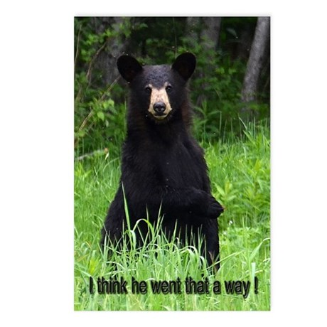 Black Bear pointing Postcards (Package of 8)