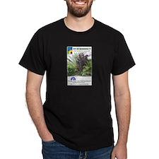 EOGTV Tropical Logos Black T-Shirt