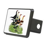 Modern Game Roosters Rectangular Hitch Cover