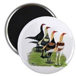 Modern Game Roosters Magnet