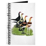Modern Game Roosters Journal