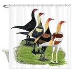 Modern Game Roosters Shower Curtain