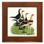 Modern Game Roosters Framed Tile