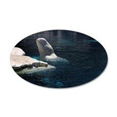 Beluga Whales 4 35x21 Oval Wall Decal