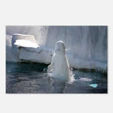 Beluga Whale jumping 3 Postcards (Package of 8)