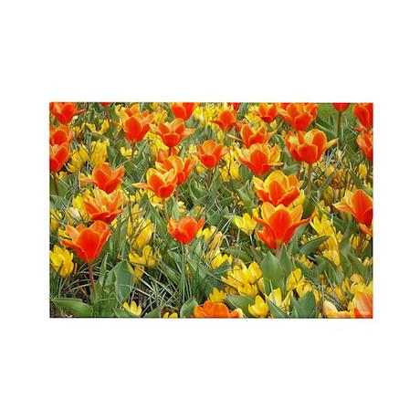 Keukenhof Tulips Magnet