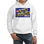 Camp Carson Colorado Hooded Sweatshirt