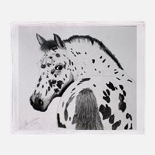 Leopard Appaloosa Colt pencil drawing Stadium Bla