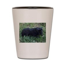 Black dog Shot Glass