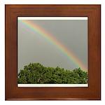 RAINBOW MAGIC™ Framed Tile