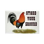 Stand Your Ground Rooster Rectangle Magnet