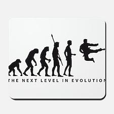 evolution karate Mousepad