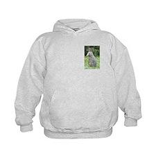 Tasmanian Pademelons Hoodie