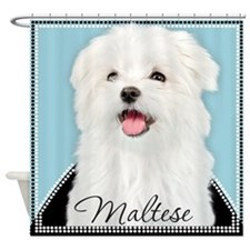 Cute Maltese Shower Curtain
